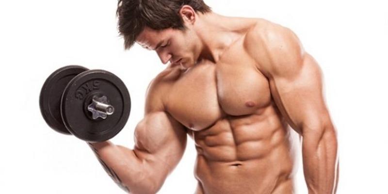 body-building-650x325_800x400